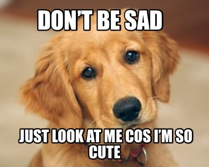 Meme Creator Funny Don T Be Sad Just Look At Me Cos I M So Cute