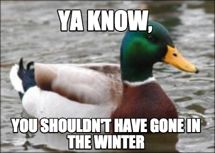 ya-know-you-shouldnt-have-gone-in-the-winter