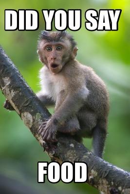 Meme Creator Funny Monkey Of The Day Night Beware Meme Generator At Memecreator Org