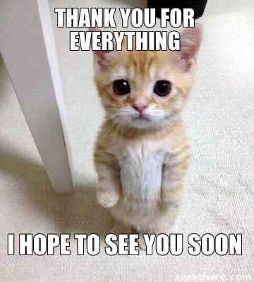 Meme Creator - Funny Thank you for everything I hope to see you ...