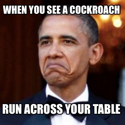 when-you-see-a-cockroach-run-across-your-table