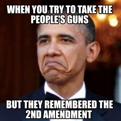 when-you-try-to-take-the-peoples-guns-but-they-remembered-the-2nd-amendment