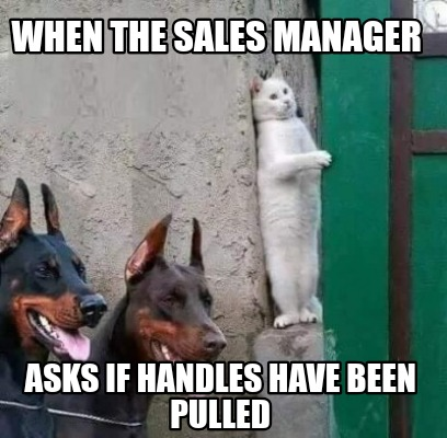 when-the-sales-manager-asks-if-handles-have-been-pulled