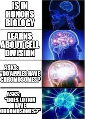 is-in-honors-biology-asks-does-lotion-have-chromosomes-learns-about-cell-divisio