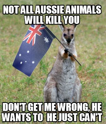 not-all-aussie-animals-will-kill-you-dont-get-me-wrong-he-wants-to-he-just-cant