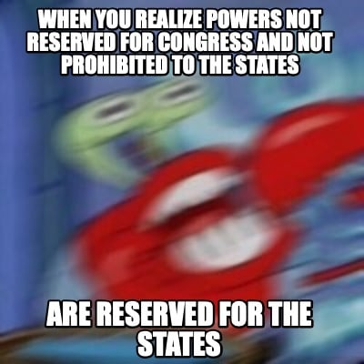 when-you-realize-powers-not-reserved-for-congress-and-not-prohibited-to-the-stat