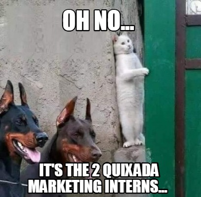 oh-no...-its-the-2-quixada-marketing-interns