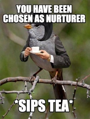 you-have-been-chosen-as-nurturer-sips-tea