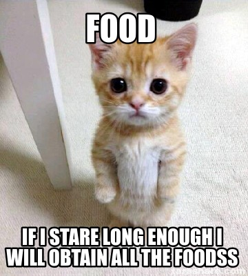 food-if-i-stare-long-enough-i-will-obtain-all-the-foodss