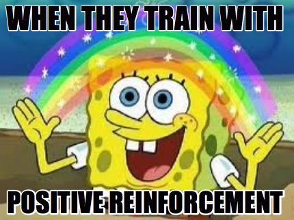 when-they-train-with-positive-reinforcement