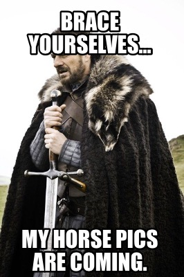 brace-yourselves...-my-horse-pics-are-coming