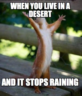 when-you-live-in-a-desert-and-it-stops-raining