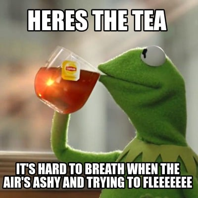 heres-the-tea-its-hard-to-breath-when-the-airs-ashy-and-trying-to-fleeeeeee
