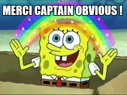 merci-captain-obvious-