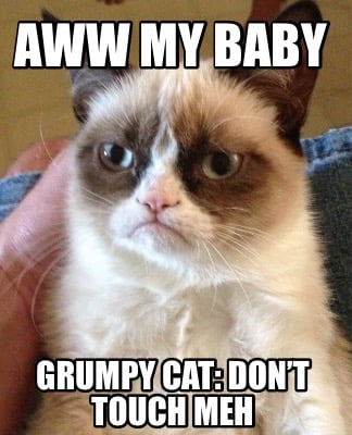 aww-my-baby-grumpy-cat-dont-touch-meh