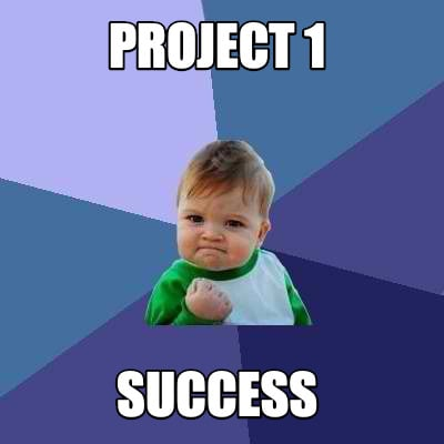 project-1-success