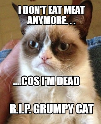 i-dont-eat-meat-anymore.-.-.-....cos-im-dead-r.i.p.-grumpy-cat