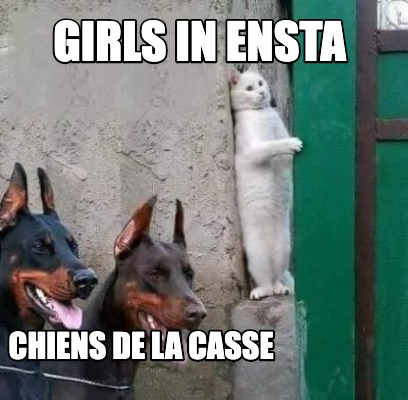 girls-in-ensta-chiens-de-la-casse