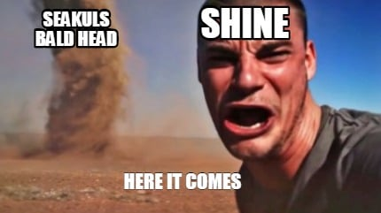 seakuls-bald-head-shine-here-it-comes