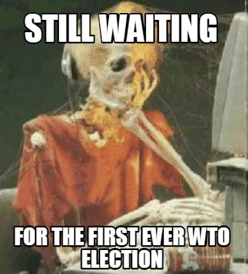 still-waiting-for-the-first-ever-wto-election