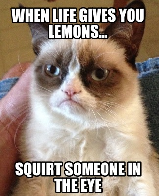 when-life-gives-you-lemons...-squirt-someone-in-the-eye