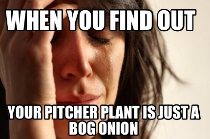 when-you-find-out-your-pitcher-plant-is-just-a-bog-onion