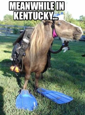 meanwhile-in-kentucky4