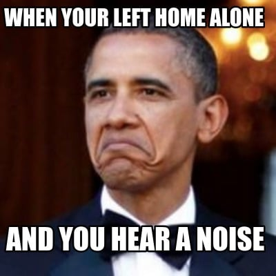 when-your-left-home-alone-and-you-hear-a-noise