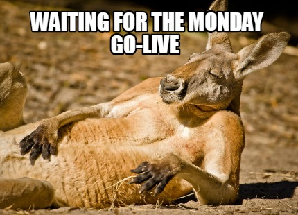 waiting-for-the-monday-go-live