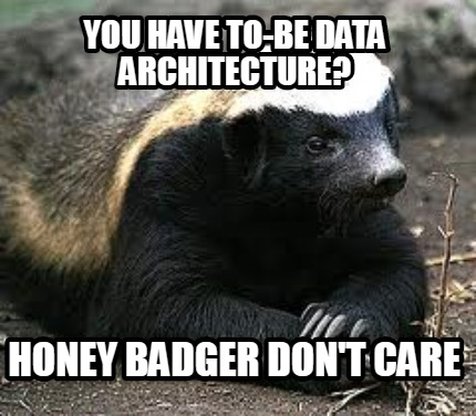 you-have-to-be-data-architecture-honey-badger-dont-care