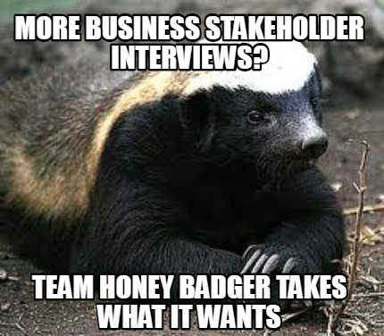 more-business-stakeholder-interviews-team-honey-badger-takes-what-it-wants