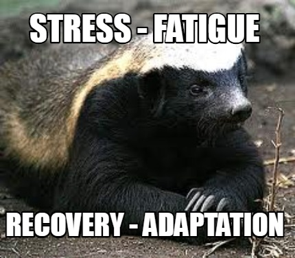 stress-fatigue-recovery-adaptation