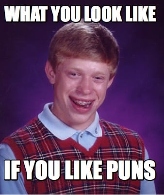 what-you-look-like-if-you-like-puns