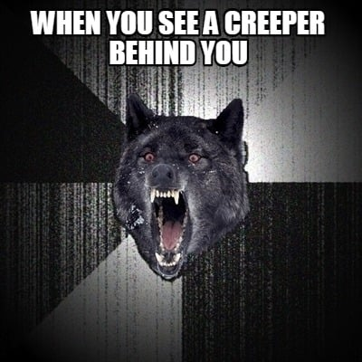 when-you-see-a-creeper-behind-you