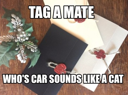 tag-a-mate-whos-car-sounds-like-a-cat