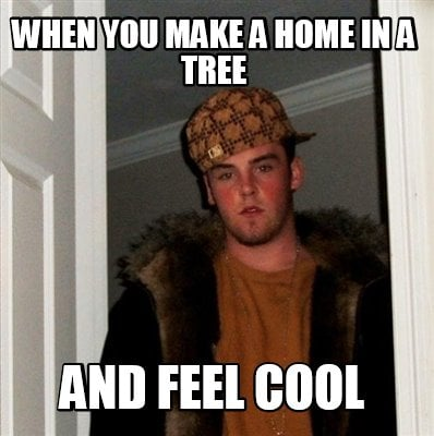 when-you-make-a-home-in-a-tree-and-feel-cool