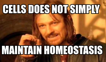 cells-does-not-simply-maintain-homeostasis
