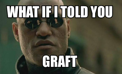 what-if-i-told-you-graft