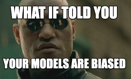 what-if-told-you-your-models-are-biased