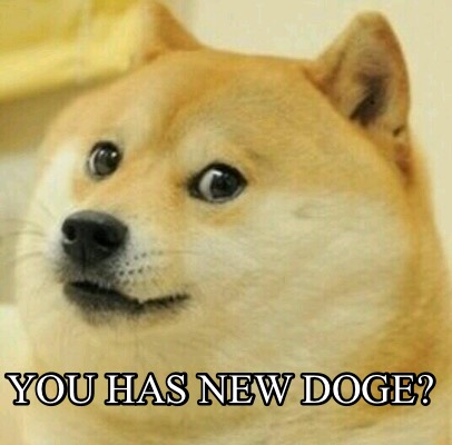 you-has-new-doge