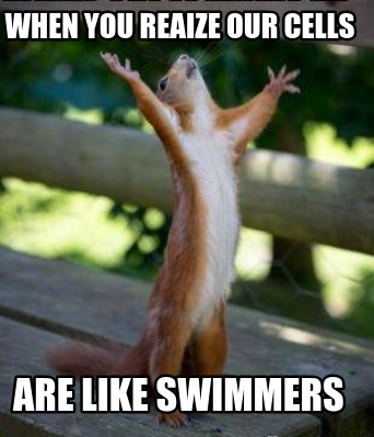 when-you-reaize-our-cells-are-like-swimmers