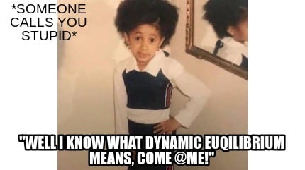 someone-calls-you-stupid-well-i-know-what-dynamic-euqilibrium-means-come-me