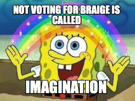not-voting-for-braige-is-called-imagination