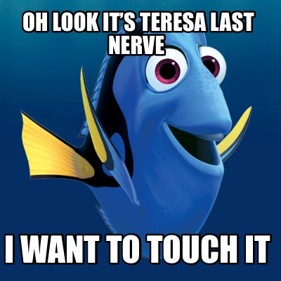 oh-look-its-teresa-last-nerve-i-want-to-touch-it