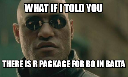 what-if-i-told-you-there-is-r-package-for-bo-in-balta