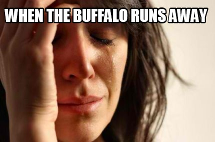 when-the-buffalo-runs-away