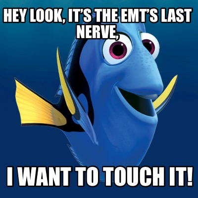 hey-look-its-the-emts-last-nerve-i-want-to-touch-it