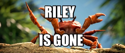 riley-is-gone9