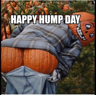 happy-hump-day063
