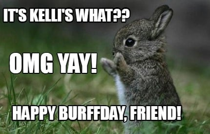 Meme Creator Funny It S Kelli S What Omg Yay Happy Burffday Friend Meme Generator At Memecreator Org Omg yay thank you all for 80 subs tvt this is so cool. meme creator